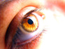 Mutations in a cell line stops stem-cell trial to cure blindness