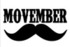 Movember – about a microbiome in (prostate) cancer risk